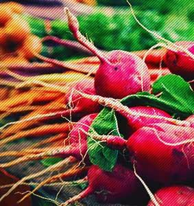 Plant based prebiotics- Natural Bladder Health Supplements